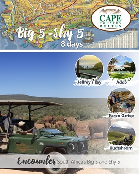 Big 5 Shy 5 Tour 8-day Tour Package - Road Trip