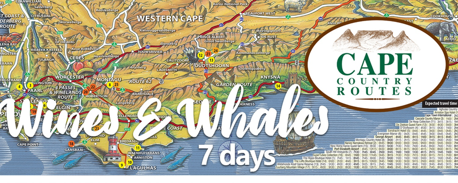 Road Trip in South Africa: Wine and Whales 7-days