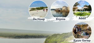 Cape Country Routes - Birding-in-the-Cape 8-day Tour Package